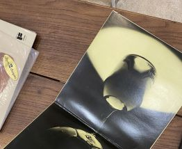 Vinyle vintage double disque The Best Of Rod Stewart
