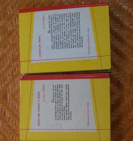 lot de 3 livres jeunesse