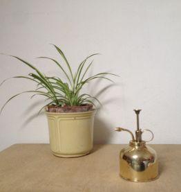 Vaporisateur pour plantes en laiton