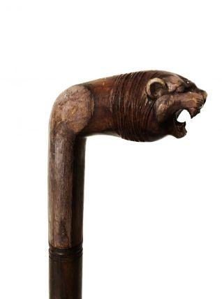 Canne sculpture « tigre »