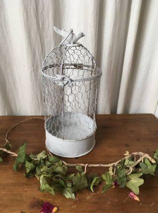 Cage à oiseaux de décoration en fer et grillage .