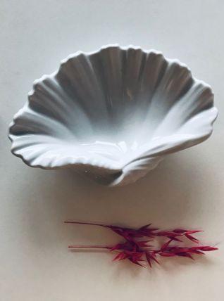 Coquillage en porcelaine