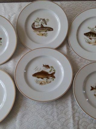 """6 assiettes plates Porcelaine de Limoges. Ligne """" Prestig"""