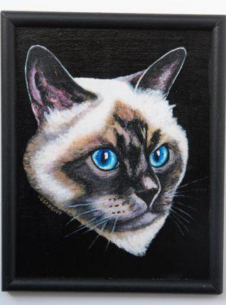 Portrait de chat Birman aux magnifiques yeux bleus.