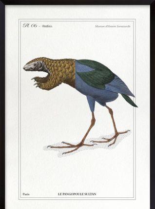 Chimère - gravure lithographie - le pangopoule