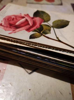 LOT 95 cartes postales de fleurs