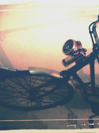 Vélo collection colle de cygnes année 1915