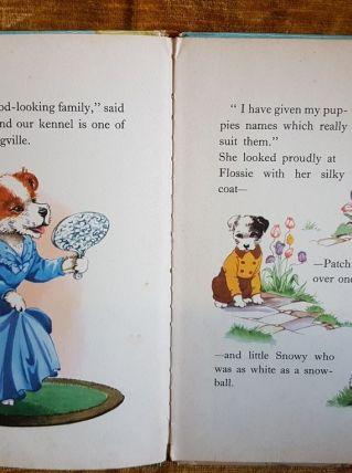 Livre enfant anglais