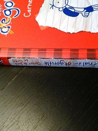 Journal d'un dégonflé N° 1 - Carnet de bord de Greg