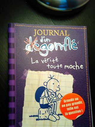 Journal d'un dégonflé N° 5 - La vérité toute moche