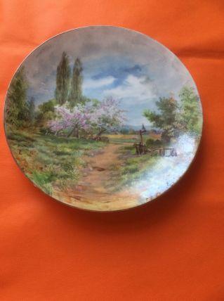 Assiettes peintes décoratives