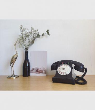 Téléphone en bakélite