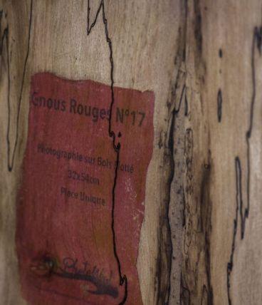 Bois Flotté Photowood Les Gnous rouges