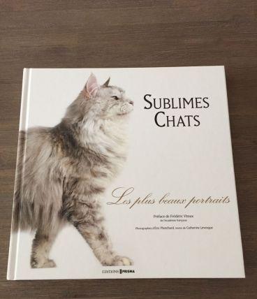 Magnifique ouvrage sur les chats