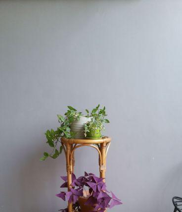 Sellette vintage porte plantes rotin