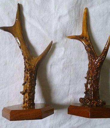 paire  de bois  de  chevreuils sur  support
