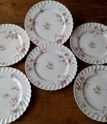 6 assiettes plates Limoges. Haviland