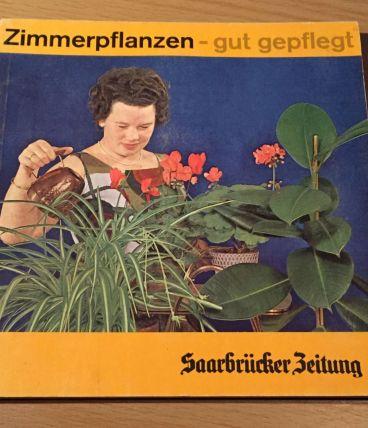 """Zimmerpflanzen, gut gepflegt"" Saarbrücker Zeitung/ 1964"