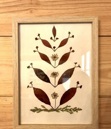 Tableau herbier