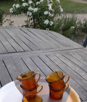 5 tasses café en verre ambré duralex, France