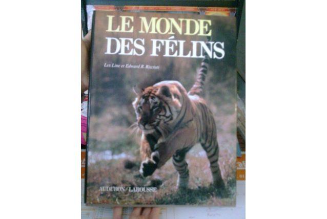 Le Monde Des Félins - Force, Douceur Et Cruauté