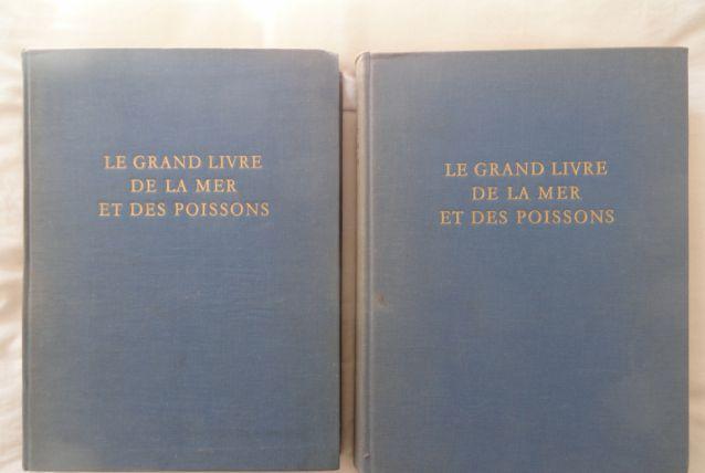 Le grand livre de la mer et des poissons luckyfind - Grand poisson de mer ...