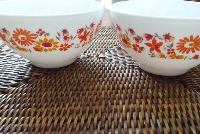 2 bols Arcopal couleurs années 70